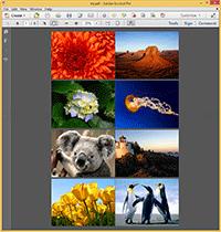 Images2PDF - Output file