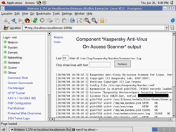 Kaspersky Anti-Virus On-Access Scanner has started