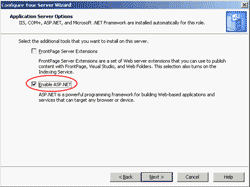 Enable ASP.NET