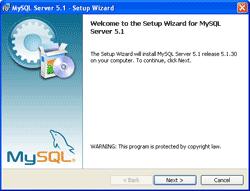 Setup MySQL Server - MySQL Server Installation