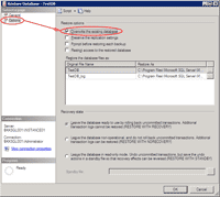 Restore Database Option