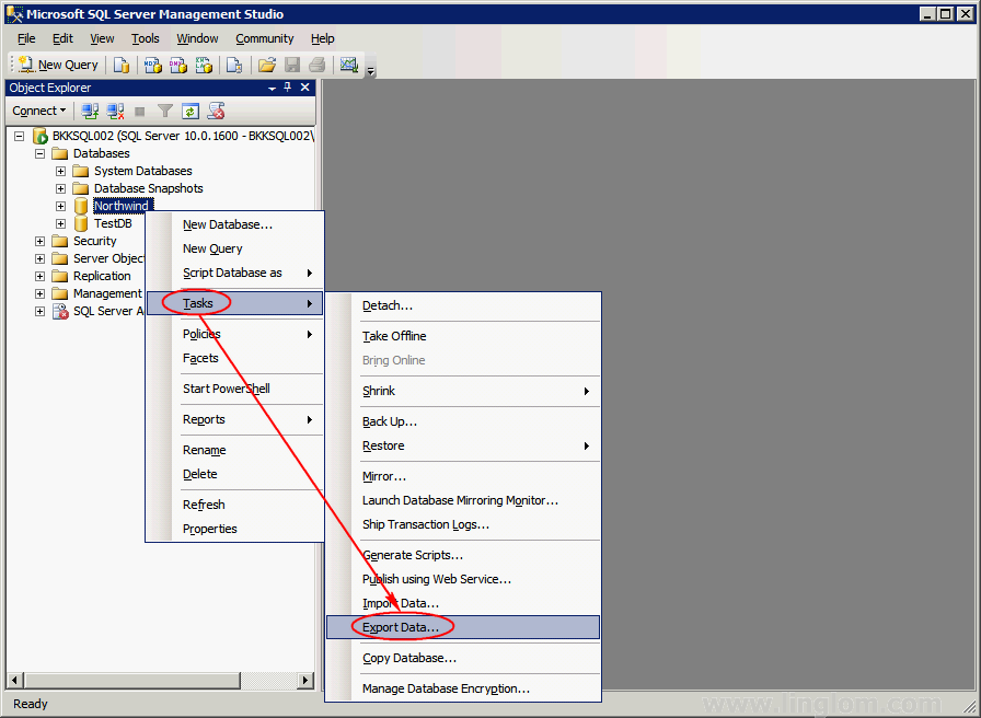 Restore Database From SQL Server 2008 to SQL Server 2005, Part 3