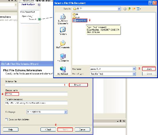 Flat File Schema Information