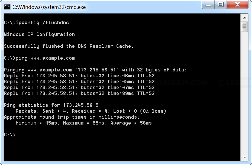 Ping a WWW domain on Windows Command Prompt