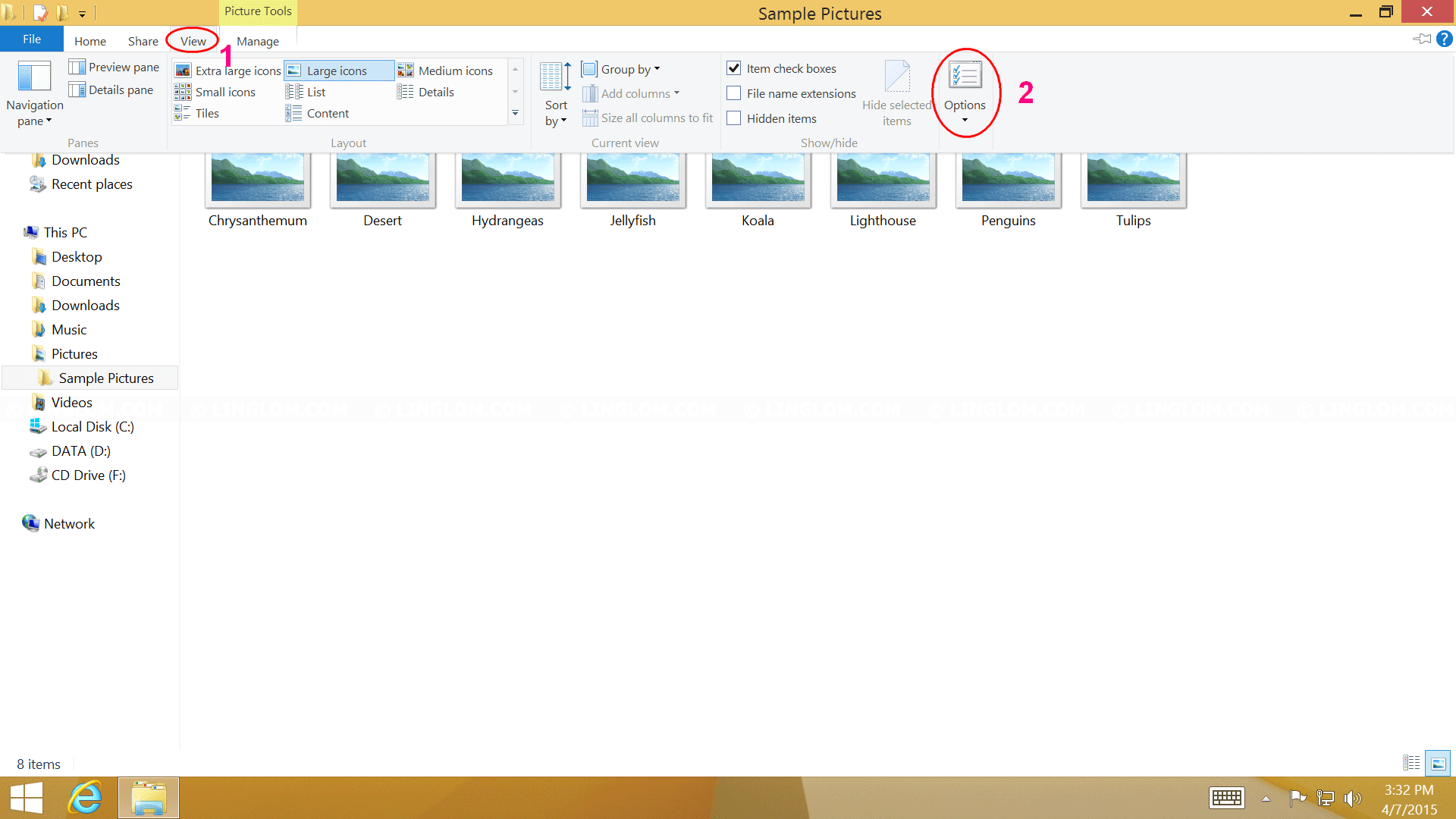 Open Folder Options on Windows 8.1