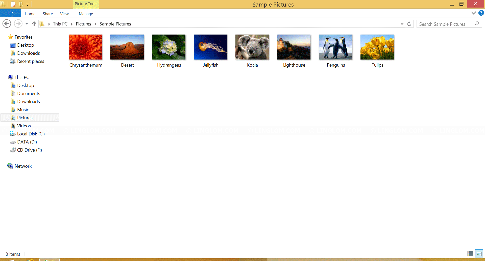 Thumbnails on Windows Explorer