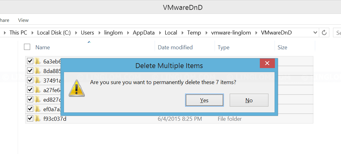 Delete all files in VMWareDnD's folder