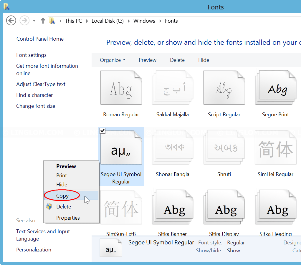 Copy Segoe UI Symbol on Windows 8.1