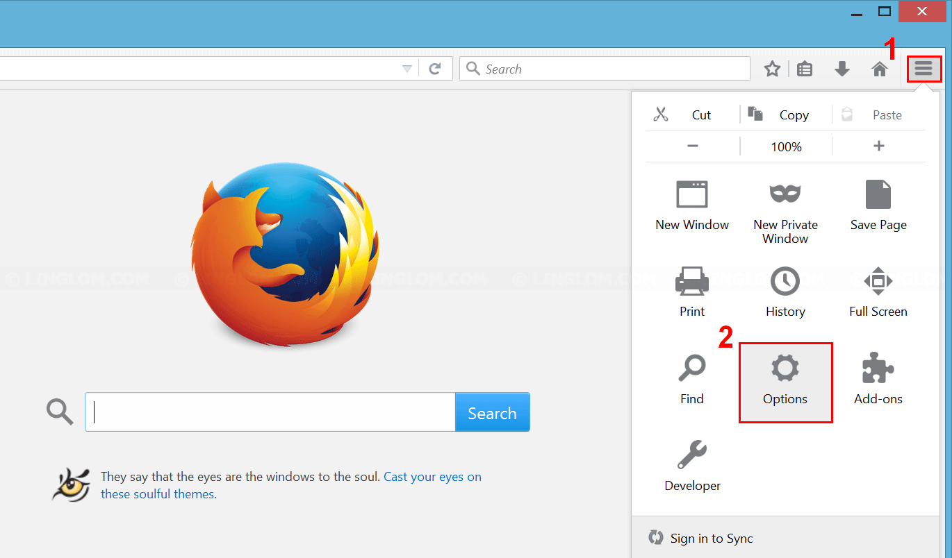 Open 'Options' menu on Firefox