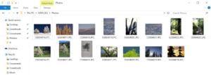 Sample photo files