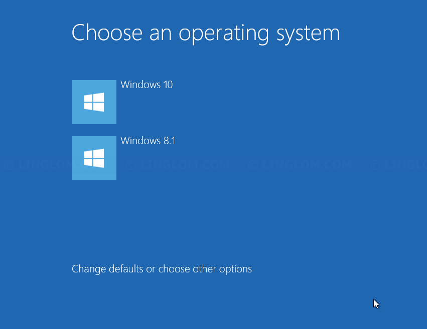 how to make a clean dual boot windows 10 drive