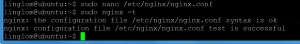 Check nginx syntax