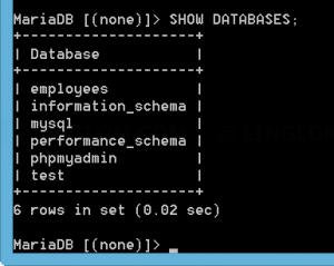 List databases on the MySQL server
